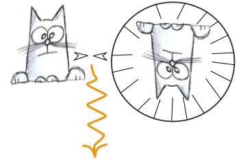 Перемещение кота во времени и пространстве
