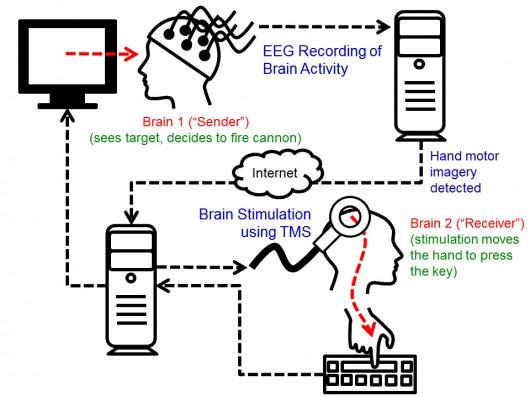 Поставлен успешный опыт организации нейрокомпьютерного интерфейса между людьми
