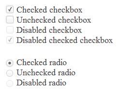 Простая кастумизация Checkbox и Radio