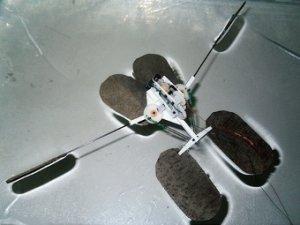 Робот водомерка от Boston Dynamics