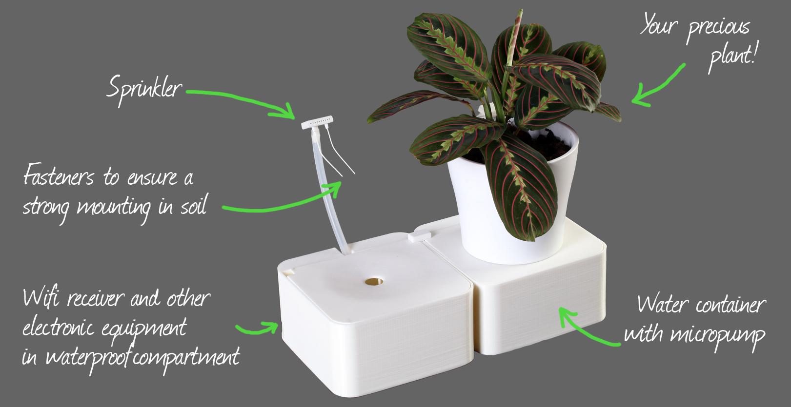 Система для полива растений. Как выйти на Кикстартер. Пошаговый процесс
