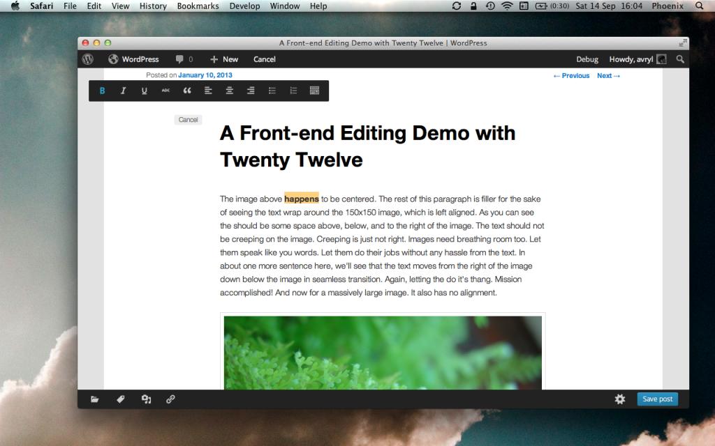 Работа с контентом в теме Twenty Twelve