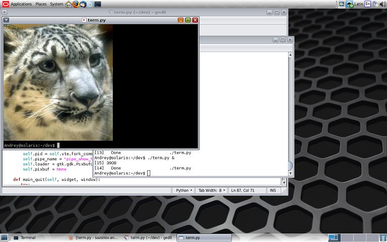 Терминал с картинками на python: proof of concept