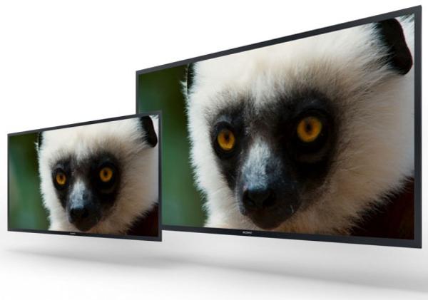 У Sony готовы прототипы мониторов 4K на базе панелей типа OLED и новые модели серии Trimaster EL