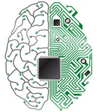 Вечная жизнь: замена мозга другим носителем с сохранением сознания и личности
