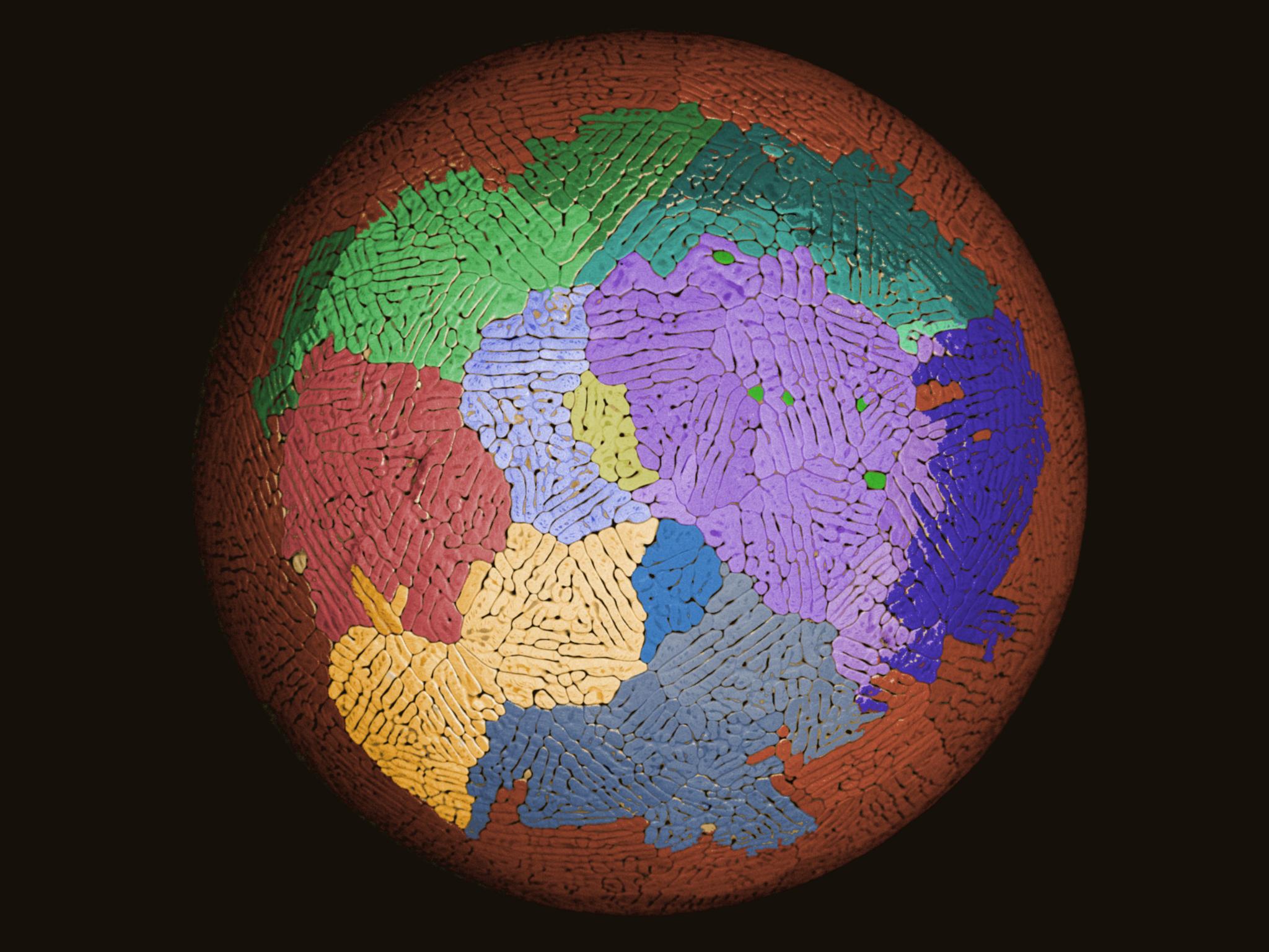Взгляд изнутри: мир вокруг нас – 4
