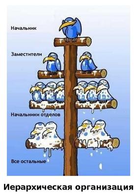 Иерархическая организация