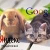 На удаление запрещённых ссылок «Яндекс» и Google получат всего 5 дней
