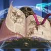 Список книг по наступательной информационной безопасности