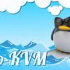 Акция «Лето KVM» — Виртуальный сервер на Linux