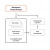 «Разрубить Гордиев узел» или преодоление проблем шифрования информации в ОС Windows