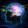 Ученые опять «ломают голову»: Возможен ли апгрейд мозга и что стоит от него ожидать