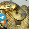 Транспорт-бот Jabber конференций для Telegram