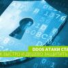 DDoS-атаки ставят рекорды. Как быстро и дешево защитить свой бизнес?