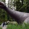 Сибирский динозавр оказался новым видом доисторического животного
