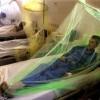 Изготовлена вакцина против лихорадки денге