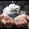 Netcube: облачные сервисы на платформе Cisco