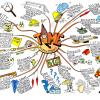 Интеллект-карты: 5 способов, которые помогли мне превратить хаос в порядок