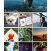 Стало доступно настольное приложение Instagram