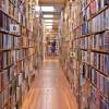 Почему поздно «делать деньги» на бизнес-литературе