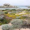 Повышение температуры превратит Испанию в пустыню