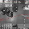 Как мы отличали тележку от прораба — видеоаналитика для кассовой зоны гипермаркета (и продолжение про кота-терминатора)