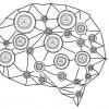 Google DeepMind научил ИИ узнавать объекты с одного «взгляда»