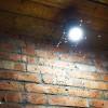 Британские ученые выяснили, что светодиодные лампы меньше привлекают насекомых