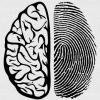 Сканирование физической структуры мозга устанавливает личность человека с точностью, близкой к 100%