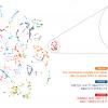 Нейросеть Google Translate составила единую базу смыслов человеческих слов