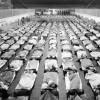 История мировых эпидемий, часть 3