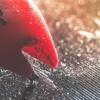 «Чтение на выходные»: 30 материалов об удивительных свойствах звука и аудиотехнологиях