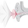 От физиологии до гаджета: наушники, которые адаптируют звук к ушам – амбициозный стартап Nura