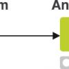 Обзор Knime Analytics Platform — open source системы для анализа данных
