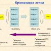 PROTEQ — протокол обмена по мультигигабитным линиям для ПЛИС Xilinx