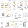 Планирование цикла разработки и выпуска релизов по продуктам