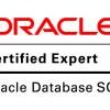 Выходим на уровень эксперта! 50 оттенков экзамена 1Z0-047 (сертификация Oracle Database SQL Certified Expert)