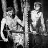 Великобритания прожила день без угля как источника электричества впервые с 1882 года