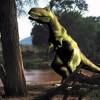 Петербургские ученые открыл новый вид динозавров