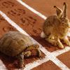 Неравный бой: CRM против Excel
