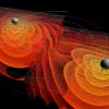В третий раз зарегистрированы гравитационные волны: что мы можем узнать о Вселенной?