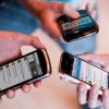 Любители смартфонов рискуют заразиться паразитами