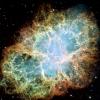 Сверхновые и нейтрино