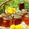 Ученые объяснили, почему основная часть меда в мире содержит пестициды