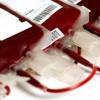 Ученые: существует некая опасность при переливании крови между женщинами и мужчинами