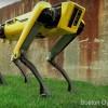 Видео дня: новая версия робота Boston Dynamics SpotMini. И она жёлтая
