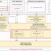 Настройка аутентификации в SAP Netweaver AS Java (Часть 2 из 3)
