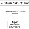 От Root CA до User Authorization в nginx+apache. Часть 1. Создаем Root&Intermediate Certificate Authority