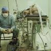 50 лет пересадок сердца