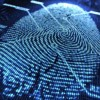 Synaptics начала массовое производство сканеров отпечатков пальцев, предназначенных для расположения под поверхностью экрана смартфонов